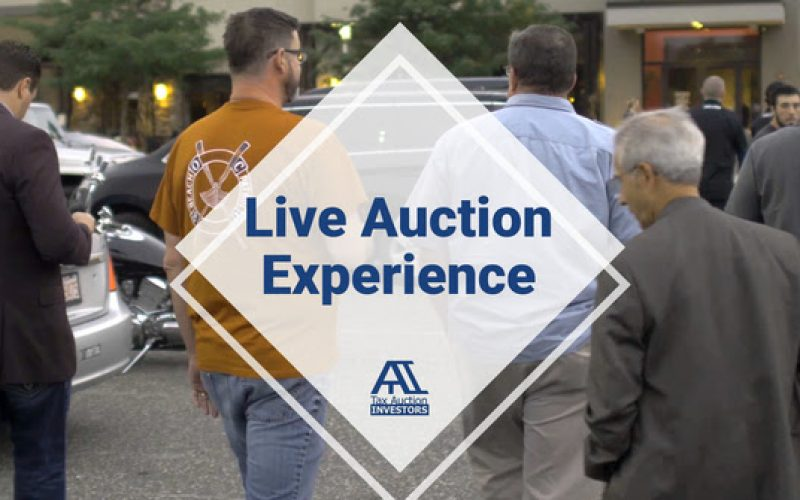 Live Auction Experience